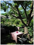 restaurant Le Jardin d'en Bas 2011/06/23